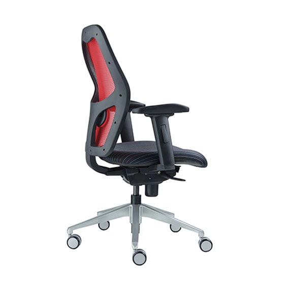 Back of Alize Mesh Office Chair in Red