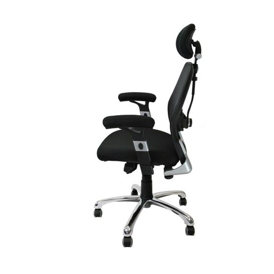 Ergo Mesh Chair with arms in black and headrest