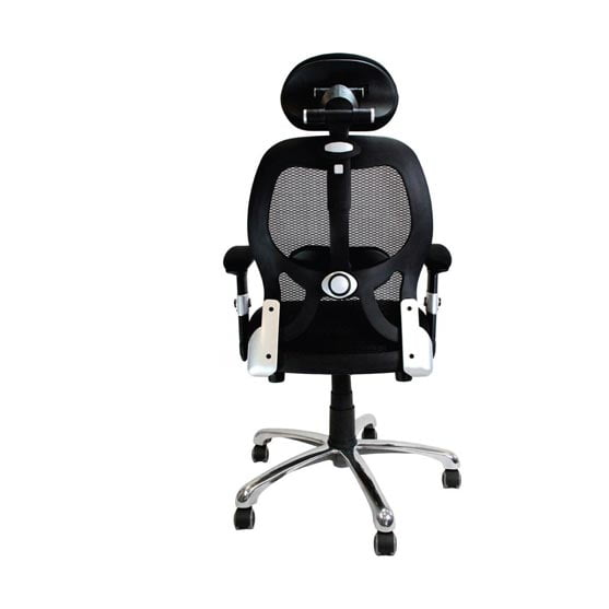 Ergo Mesh Chair showing the back