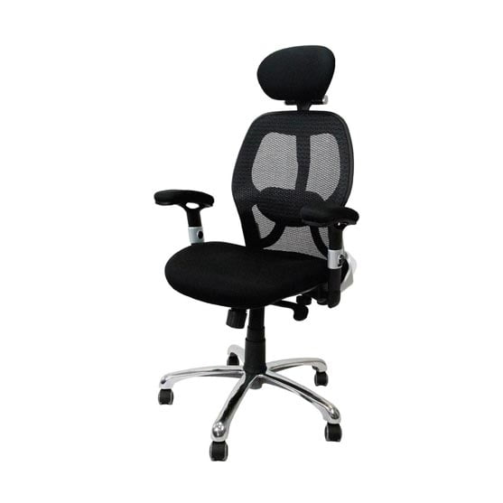 Ergo Mesh Chair in black with arms