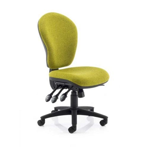 Ergo Ergonomic Chair without arms