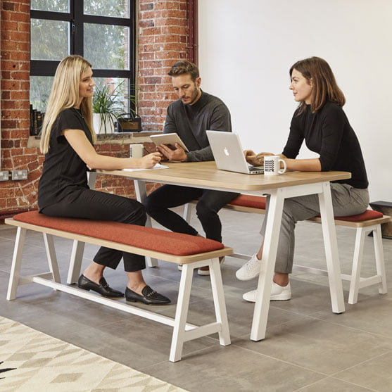 Loco Bench From Elite