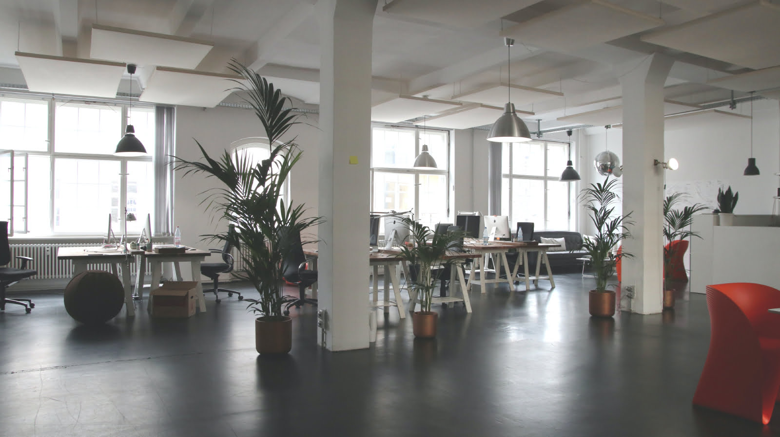 Office with plants blocking noise